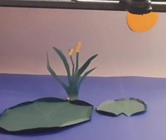 """Ponto MIS de Ilhabela oferece oficina """"Animação Stop Motion – Origami"""""""